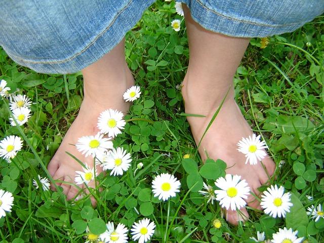 sedmikrásky a dětské nohy.jpg